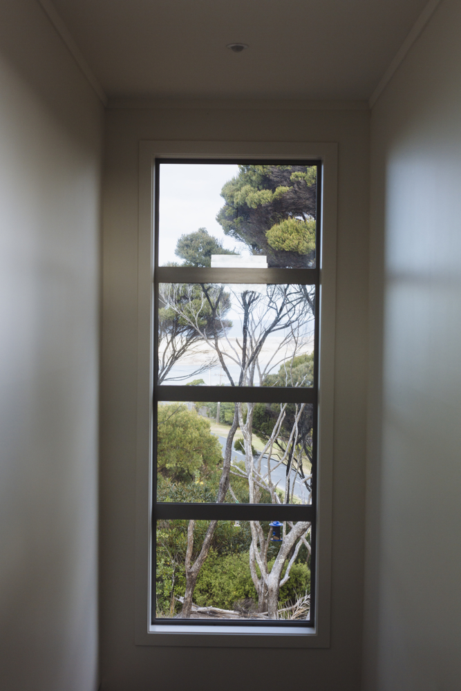 Manuka through the window